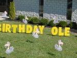 yard-card-birthday-buzzards