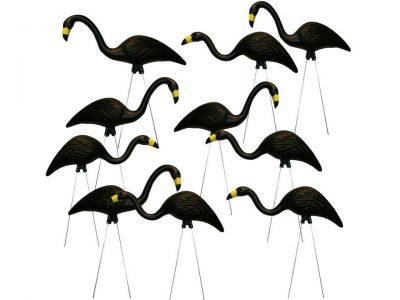 Black Plastic 3d flamingo rental flock a yard rental cincinnati ohio
