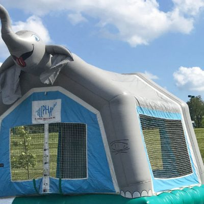 Elephant Animal Circus Bounce House Rental Cincinnati Ohio