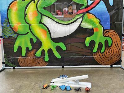 Carnival Froggy Fly Fling Bugs Frame Game Rental Cincinnati Ohio