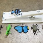 Carnival Froggy Fly Fling Insects Frame Game Rental Cincinnati Ohio