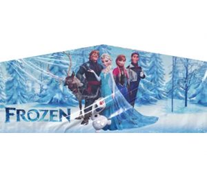 Elsa Frozen Playhouse Inflatable Castle Bounce House and Slide Combo Rental Cincinnati Ohio