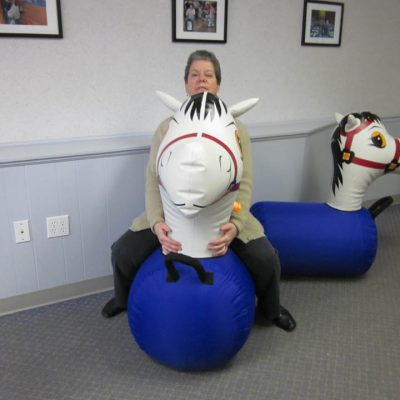 Pony Hops Inflatable Bouncing Horse Race Rental Cincinnati Ohio