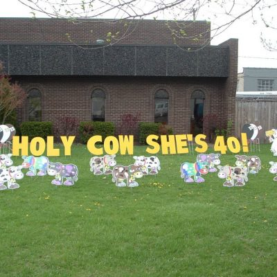 Holy Cow Yard Cards & Signs Rentals Cincinnati Ohio