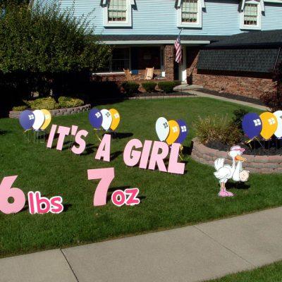 It's a Girl Stork Birth Announcement Yard Cards & Signs Rentals Cincinnati Ohio