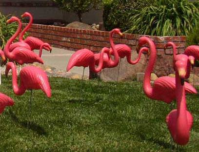 Pink Flamingos Lawn Decoration