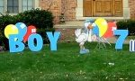 It's a boy Yard Cards & Signs Rentals Cincinnati Ohio