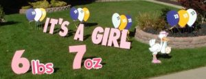 It's a Girl Yard Cards & Signs Rentals Cincinnati Ohio