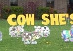 Holy Cow Yard Cards & Signs Rentals Cincinnati Ohio